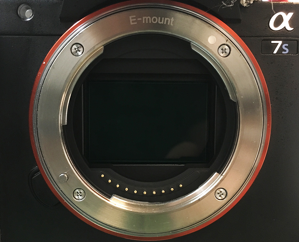 The sensor on my A7sii
